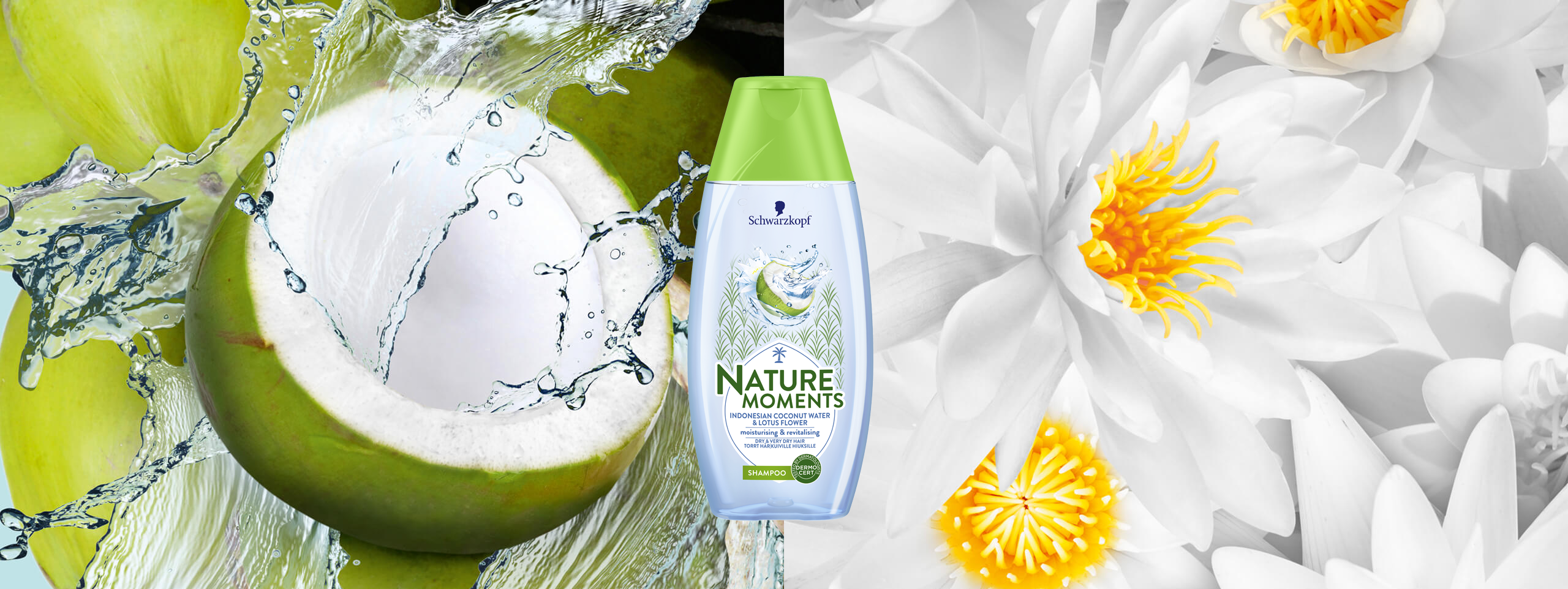 Banner_NatureMoments_CoconutWater